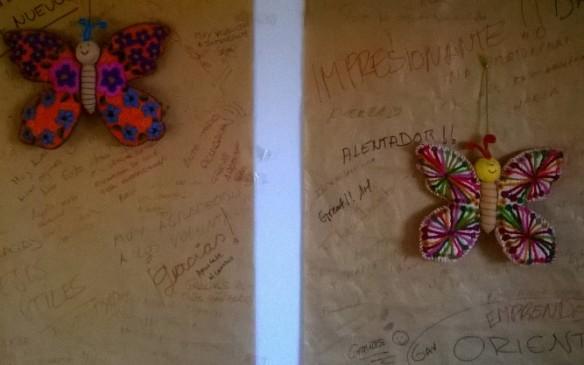 mariposas2013