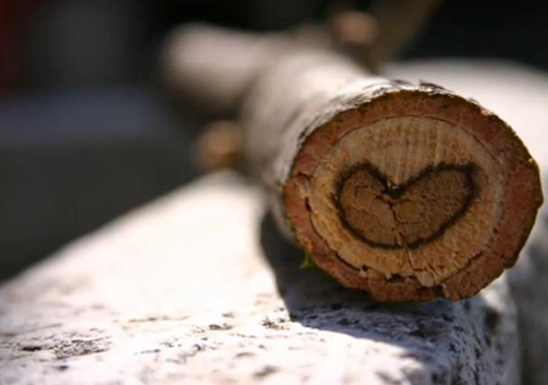 Resultado de imagen para un corazòn para ti