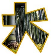 bambuvistamon